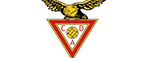2007/2008  D. Aves